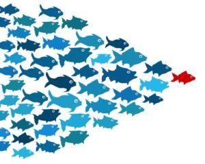 leadership-leader